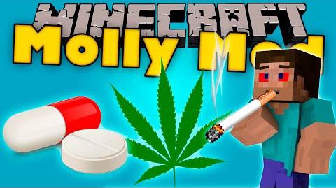 molly minecraft mod
