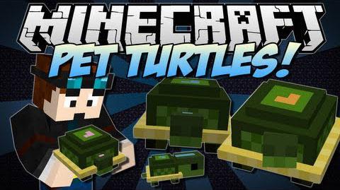 pet turtles minecraft mod