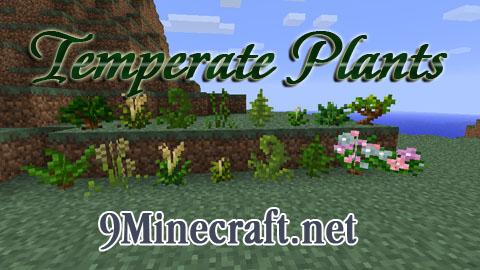 temperate plants minecraft mod